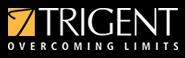 Trigent Software Ltd.